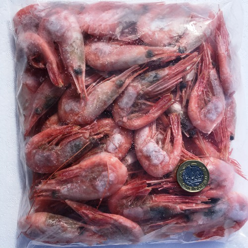 Shell on Prawns 90-120 count x 1lb | King Crab